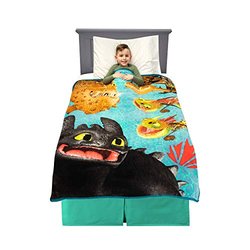 Franco Kids Bedding Super Soft Plush Throw, 46' x 60', How to Train Your Dragon