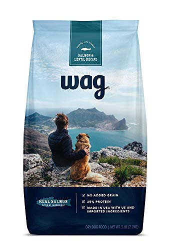 Amazon Brand - Wag Dry Dog Food Salmon and Lentil Recipe (5 lb. Bag) Trial