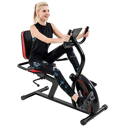 Vanswe Recumbent Exercise Bike 16 Levels Magnetic Tension Resistance 380 lbs. Stationary Bike with Adjustable Seat, Transport Wheels and Bluetooth Connectivity for Seniors Workout and Physical Therapy (Red/Black)