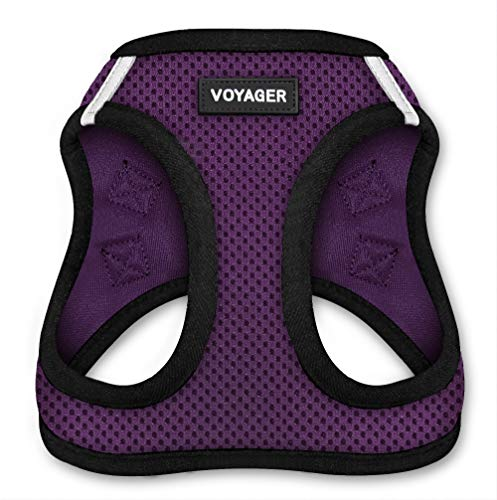Best Pet Supplies Voyager Step-in Air Dog Harness - All Weather Mesh, Step in Vest Harness for Small and Medium Dogs