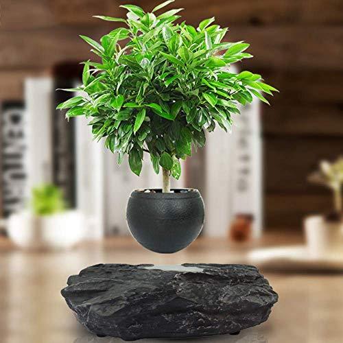 Yadianna Home Decoration Floating Bonsai Pot Magnetic Suspension Levitating Air Flower Pots Creative Design Levitation Bonsai Home Office Decorations Fun Gift