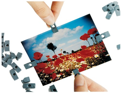 Lomographic Fotoclips (pack of 100)