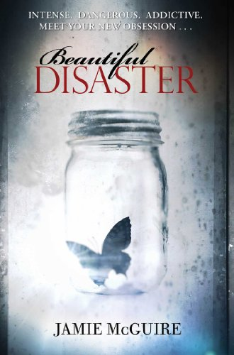 Beautiful Disaster: A Novel