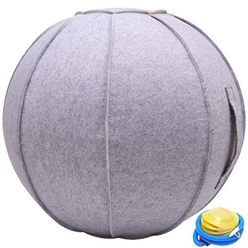 N/N 65cm Sitting Ball Chair for Office, Dorm, and Home, Exercise Yoga Ball with Cover, Lightweight Self-Standing Ergonomic Posture Activating Exercise Ball Solution with Handle and Pump