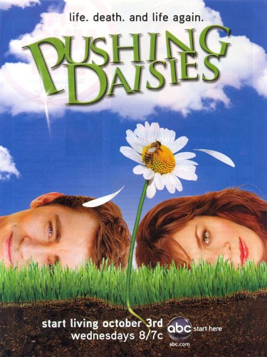 Pushing Daisies Poster TV J 27x40 Lee Pace Anna Friel Chi McBride