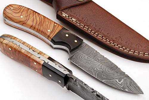 SharpWorld 8 Inches Beautiful Damascus Skinner Knife Made of Remarkable Damascus Steel Wood/Horn Handle/w Brown Leather Sheath TJ113
