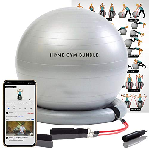 Home Gym Bundle Exercise Ball Chair - Yoga Fitness Pilates Balance Ball & Stability Base for Home Gym & Office - Resistance Bands, Workout Poster & Pump. Improve Abs, Booty, Core, Strength, & Posture