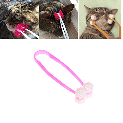 Stebcece Cat Massage Roller Face Massager for Kitty Pet Toy (S)