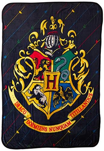 Harry Potter House Pinstripes Micro Raschel Throw Blanket, 46' x 60'