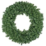 Northlight Colorado Pine Artificial Christmas Wreath - 48-Inch, Unlit