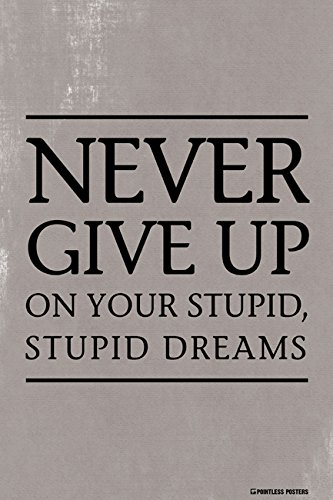 Pointless Posters Never Give Up On Your Stupid, Stupid Dreams Demotivational Poster Print