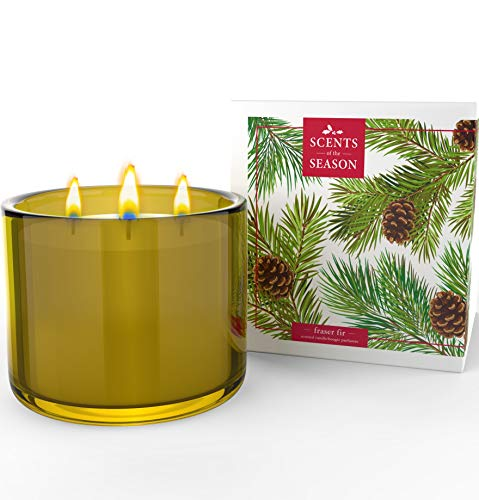 Frasier Fir 3 Wick Scented Candle | Non-Toxic Long Burning Soy Candles | Festive Home Fragrance | 16 oz Heavy Glass Jar | Hand Made in The USA