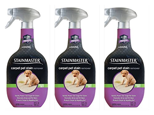 Stainmaster Pet Carpet Stain Remover Cleaner 22 oz each (pack 3)
