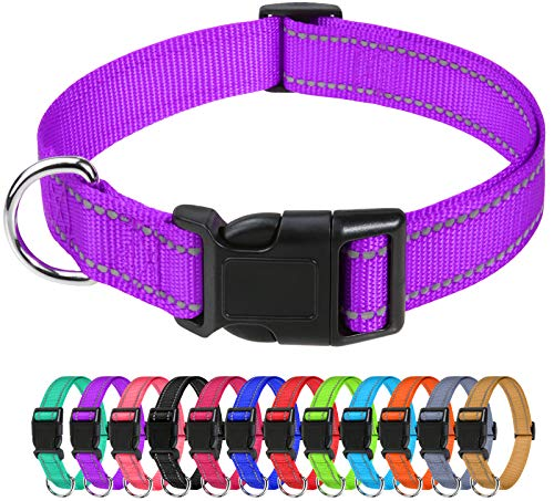 TagME Reflective Nylon Dog Collars, Adjustable Classic Dog Collar with Quick Release Buckle for Medium Dogs, Purple, 1.0' Width