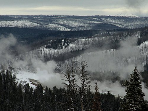 Winter in the Caldera: January in the Yellowstone Hotspot