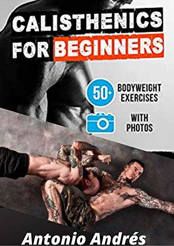CALISTHENICS : WORKOUT PLAN FOR BEGINNERS