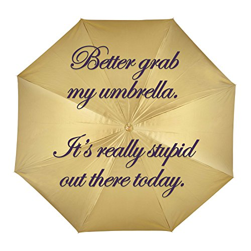 Decal Serpent Better Grab an Umbrella It's Really Stupid Out There Today Funny Demotivational Sticker 4'
