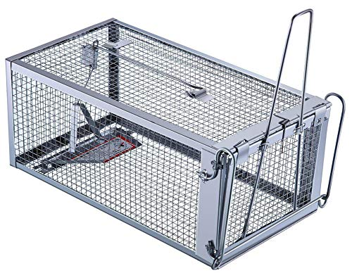 Trap Top Live Animal Trap, Excellent Chipmunks, Rats & Mice Humane Cage Trap, Just Catch and Release