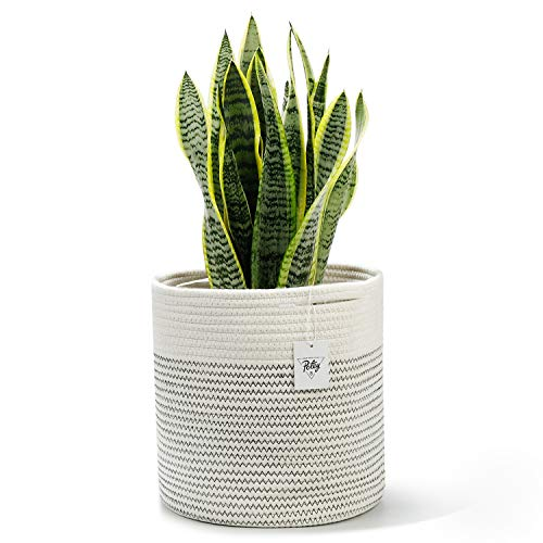 POTEY 700201 Cotton Woven Rope Plant Basket Modern Indoor Decorative Planter Up to 10 Inch Pot Woven Storage Organizer with Handles Home Decor, 11' x 11', Cream White and Black Stitching