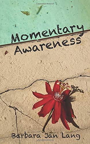Momentary Awareness