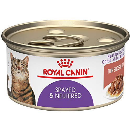 Royal Canin Feline Health Nutrition Spayed / Neutered Thin Slices In Gravy Canned Cat Food, 3 oz Can (Pack of 24)