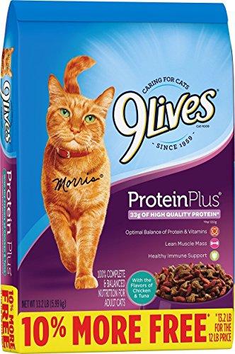 9Lives Protein Plus Dry Cat Food Bonus Bag, 13.2Lb