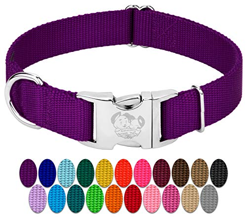 Country Brook Design - Vibrant 26 Color Selection - Premium Nylon Dog Collar with Metal Buckle (Large, 1 Inch Wide, Purple)