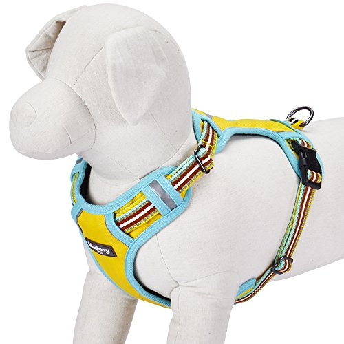 Blueberry Pet 9 Colors Soft & Comfy 3M Reflective Multi-Colored Stripe Mesh Padded No Pull Dog Harness Vest with Back Leash Clips, Small, Yellow, Azure & Brown