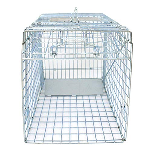 HomGarden Humane Live Animal Cage Trap 32inch Steel Catch Release Rodent Cage for Rabbits, Groundhog, Stray Cat, Squirrel, Raccoon, Mole, Gopher, Chicken, Opossum, Skunk, Chipmunks
