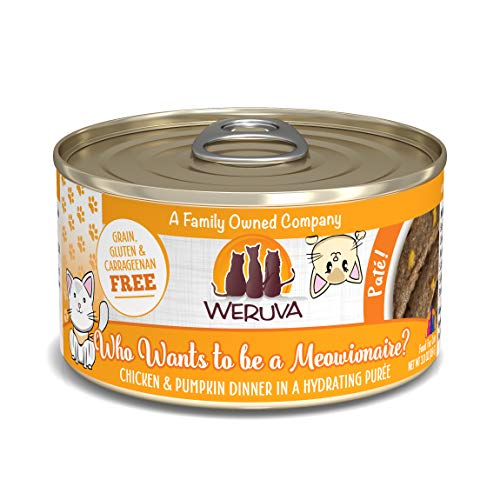 Weruva Classic Cat Paté, Who wants to be a Meowionaire? with Chicken & Pumpkin, 3oz Can (Pack of 12)