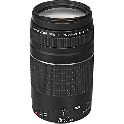 Canon EF 75-300mm f/4-5.6 III Telephoto Zoom Lens for Canon SLR Cameras, 6473A003 (Renewed)