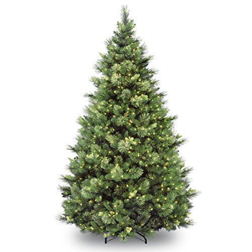 National Tree Company lit Artificial Christmas Tree Includes Pre-strung White Lights and Stand Flocked with Cones Carolina Pine, 9 ft, Green, 9 ft