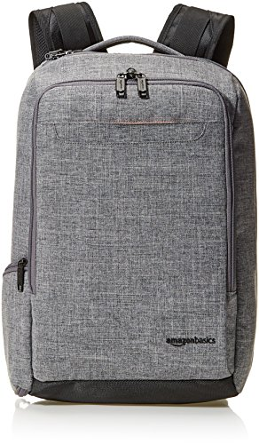 AmazonBasics Slim Carry On Laptop Travel Overnight Backpack - Grey