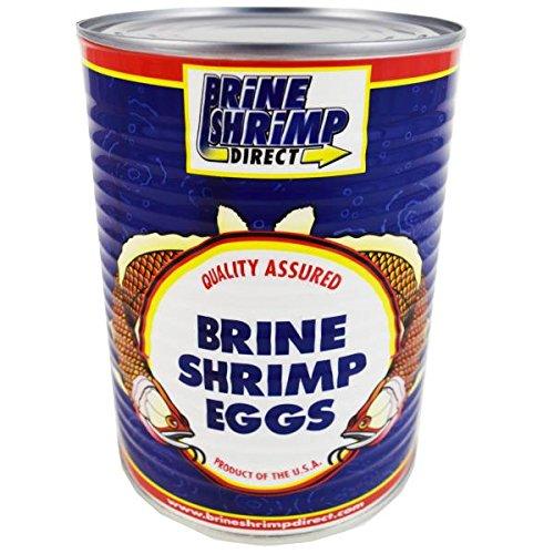 Premium Grade Brine Shrimp Eggs ( 90%), 16 oz.