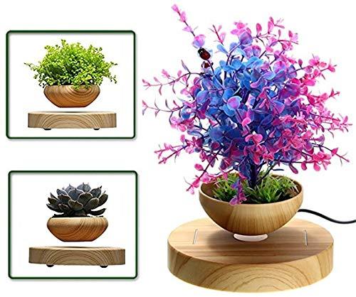 E-18th Levitating Air Bonsai Pot - Magnetic Levitation Suspension Flower and air Bonsai Pot