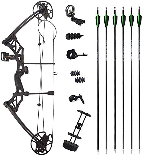 AMEYXGS Archery Compound Bow and Arrows Set 30-70lbs Hunting Bow Competition Practice Bow Max Speed 320 fps Adult Archery Shooting Kit — Right Hand