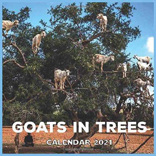 Goats In Tree: 2021 Animal cute wall Calendar Goats with Official Holidays & Inspiring Quotes