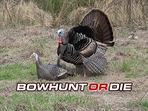 Turkey Hunting Floppage