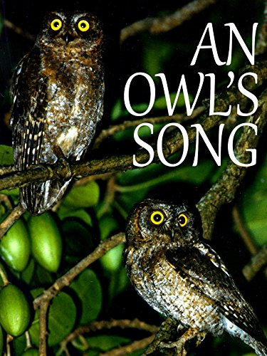 An Owl's Song
