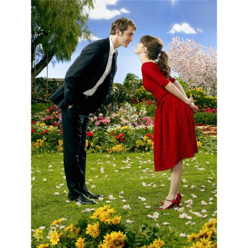 Pushing Daisies Poster by Silk Printing # Size about (35cm x 47cm, 14inch x 19inch) # Unique Gift # 50694E